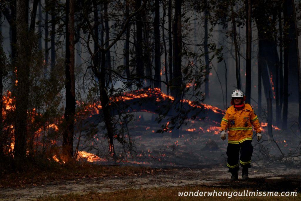NEW ZEALAND เกิดไฟป่าไหม้ที่ป่าบุชและได้ทำลายบ้านเรือนหลายสิบหลังคาในประเทศนิวซีแลนด์ ล่าสุดเจ้าที่ได้ออกมากล่าวถึงกับเหตุการณ์ที่เกิดขึ้น